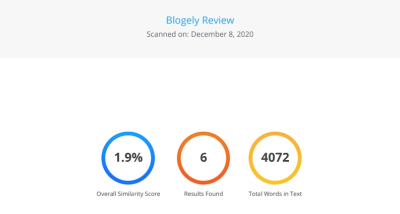 Blogely Review Plagiarism Report